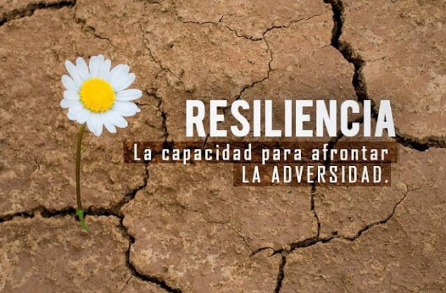 Resiliencia: las personas capaces de renacer luego de una adversidad