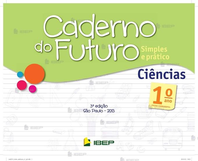 Caderno do Futuro Ciências 1º Ano Professor.