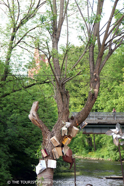Books in a tree by the river with a bridge in the background in Užupis in Vilnius in Lithuania