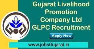 How To Apply GLPC Gujarat Livelihood  Recruitment