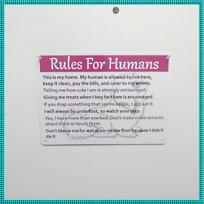"SmartSign's 10 x 14 inch sign based on On My Kindle BR's ""Rules for Humans"" design."