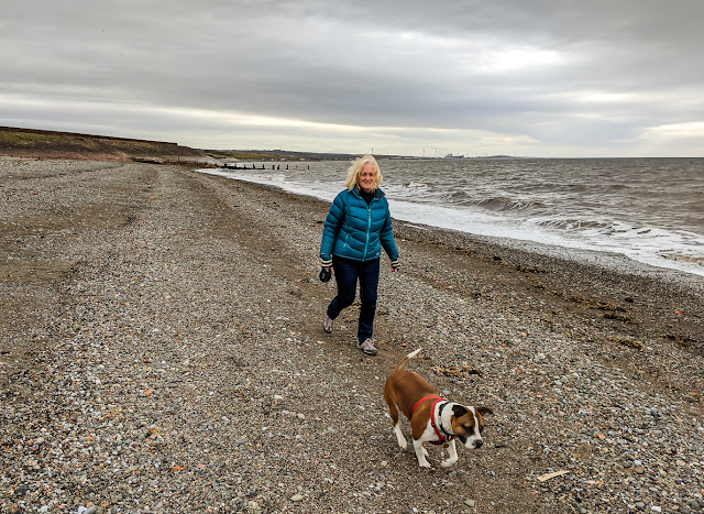 Photo of me walking Ruby on the shore