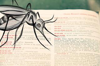 nitish-warning-for-aes-je-bird-flue-swaine-fever-alert