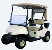 CARRO ELECTRICO DE GOLF