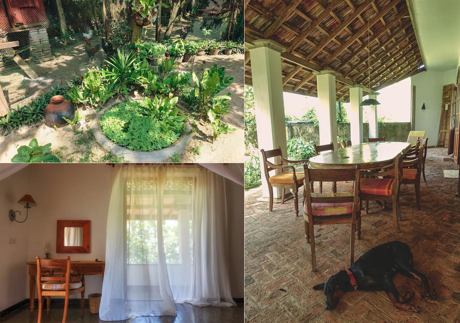 Airbnb Beruwala