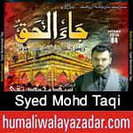 http://www.humaliwalayazadar.com/2015/10/syed-mohd-taqi-nohay-2016.html