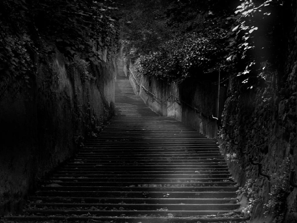 Dark Strips Gallery