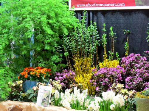 Fort Wayne Home and Garden Show flowers