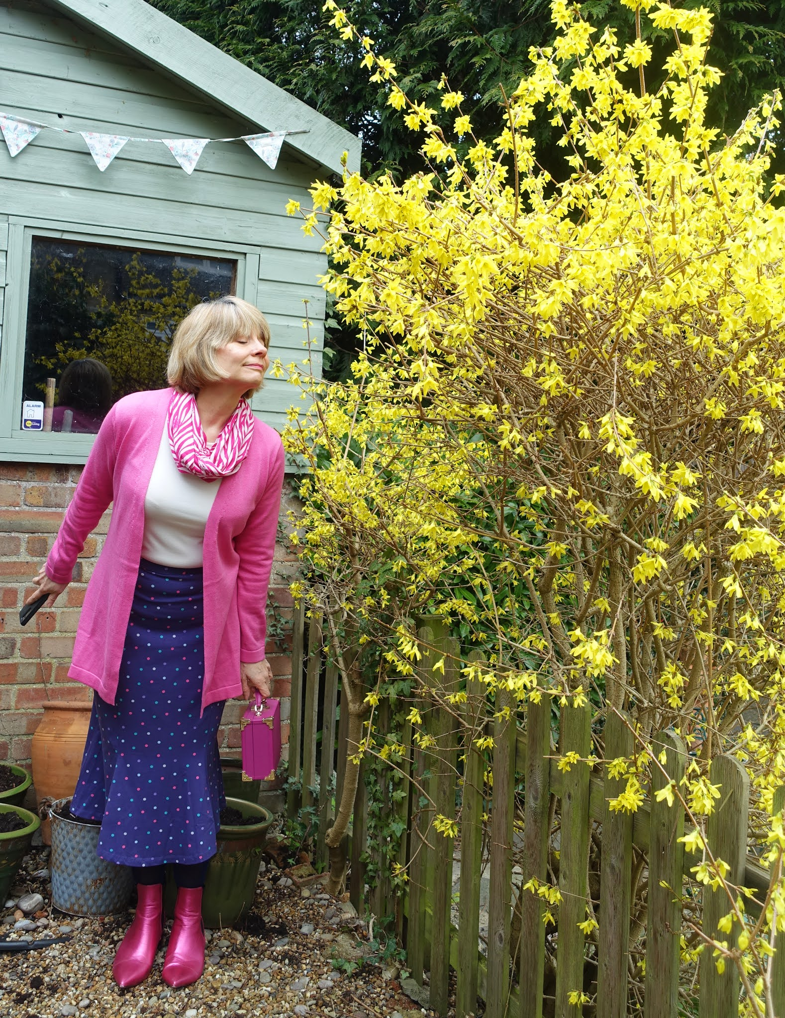 Smelling the forsythia:  style blogger Gail Hanlon in cerise pink cardigan, metallic pink boots and Ella polka dot skirt from Kettlewell Colours