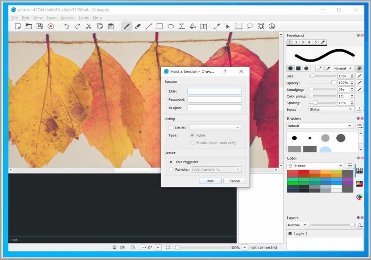 Drawpile : Πρόγραμμα ζωγραφικής που επιτρέπει σε πολλούς χρήστες να έχουν πρόσβαση σε σκίτσο στον ίδιο καμβά ταυτόχρονα.