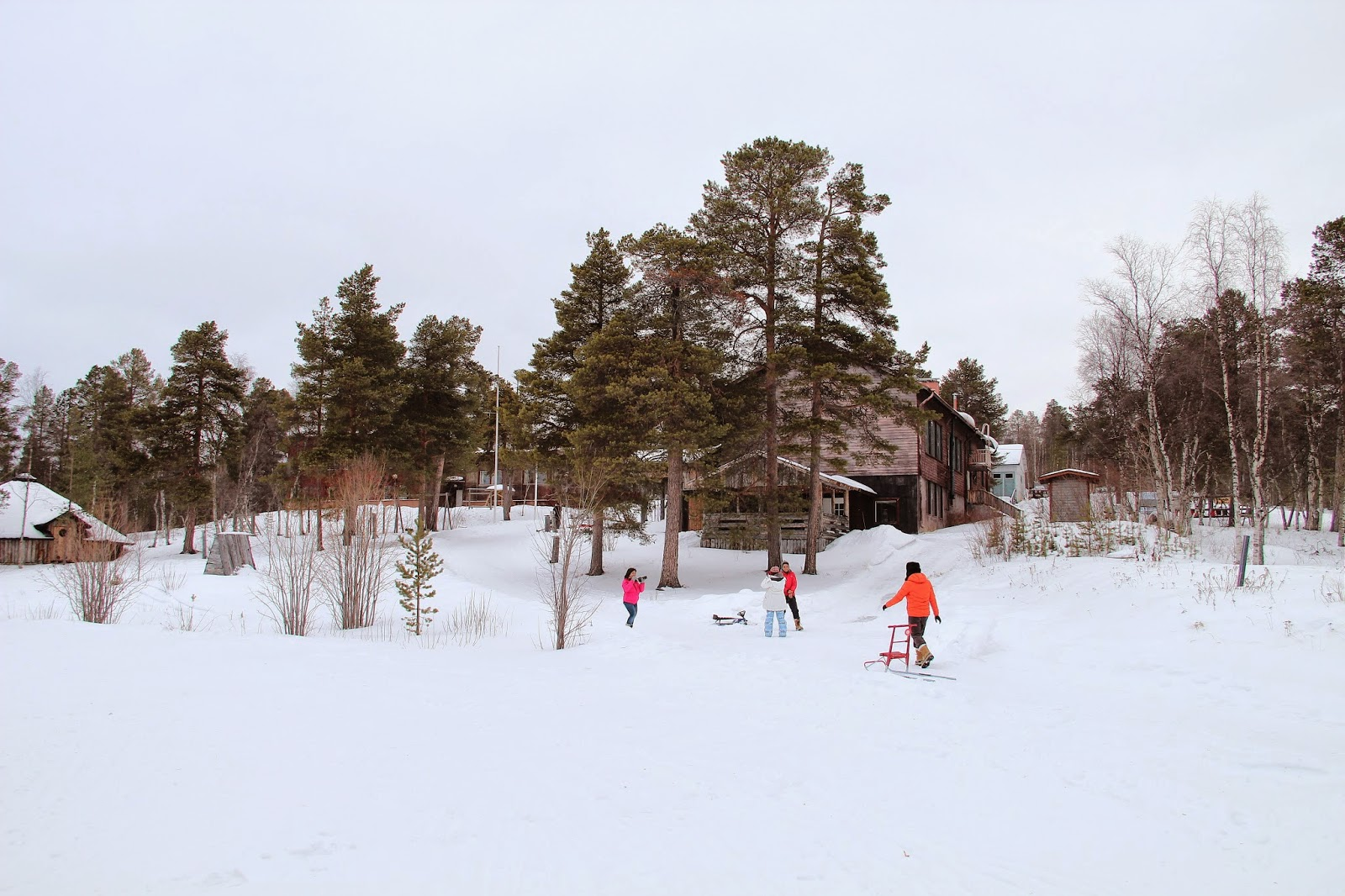 Winter Activities at Hotel Korpikartano, Finland