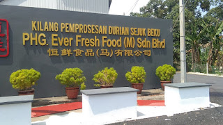 Cerita dari Lipis Durian