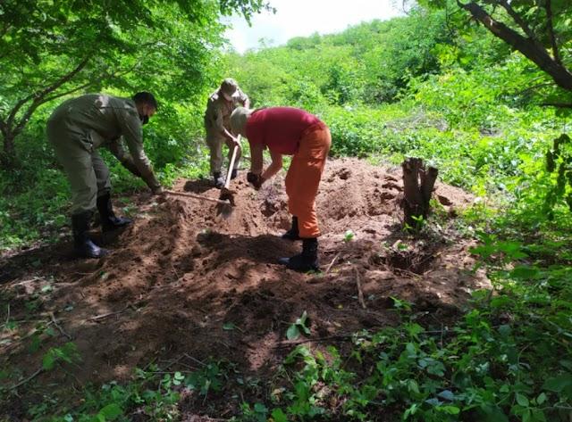 Corpo de adolescente desaparecido há 45 dias é encontrado em cova no Ceará
