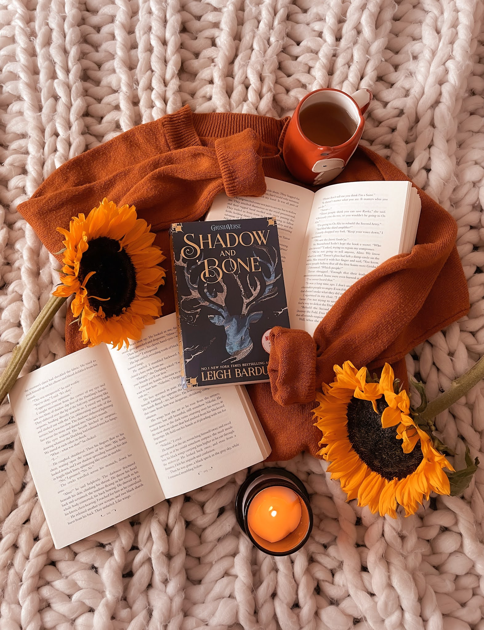 Shadow and Bone Trilogy Review
