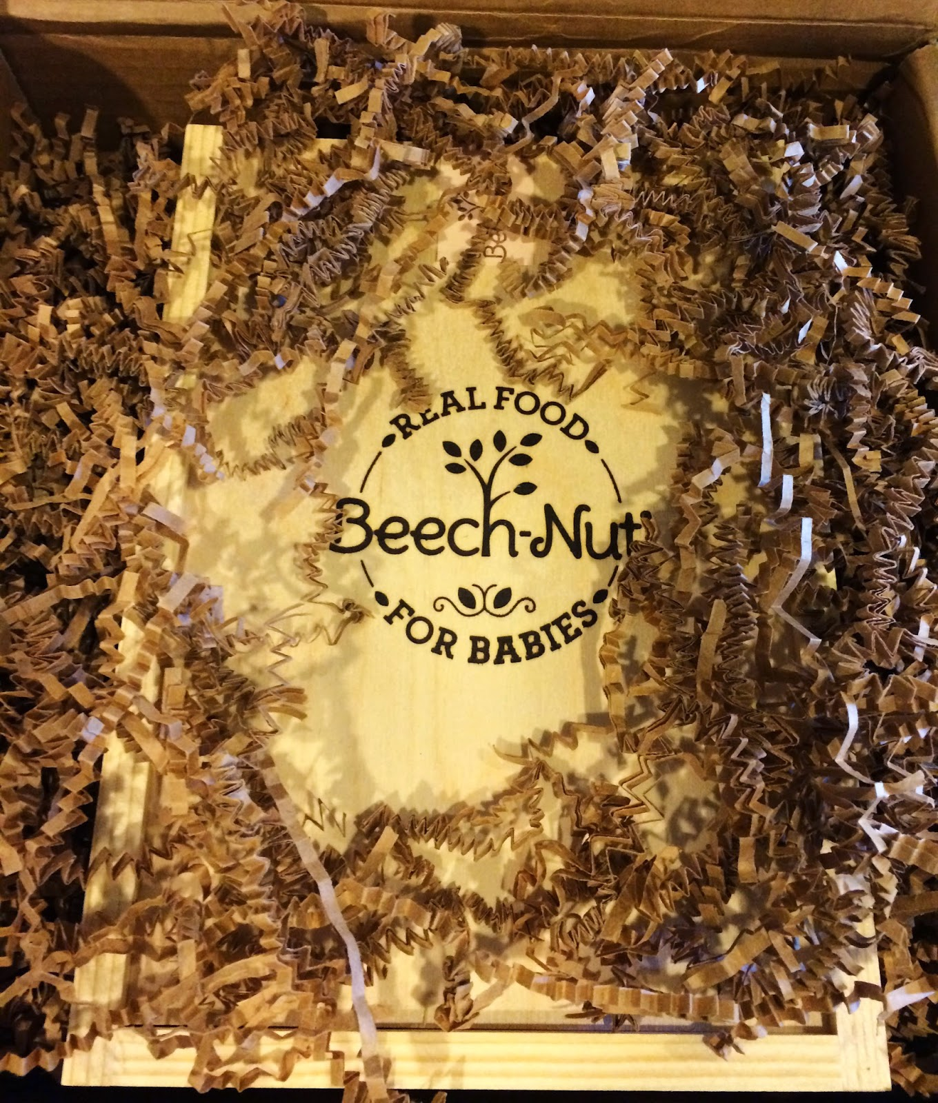 Beech-Nut isn't baby food. It's real food for babies! This company wins in every way- organic, helthy fruits/veggies and more all packaged nicely in quality materials. #organicbabyfood #toddlerfood #pickyeaters