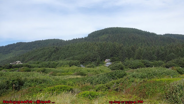 Siuslaw National Forest Oregon