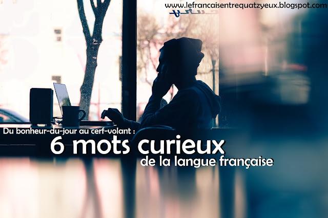 mots curieux français