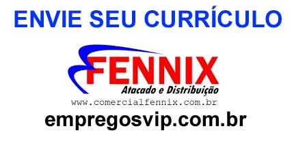 Fennix Distribuidora vagas de emprego