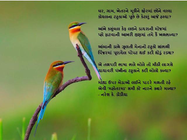 घर, गाम, खेतरने मूकीने श्हेरमां छोने वस्या Gujrati Gazal By Naresh K. Dodia