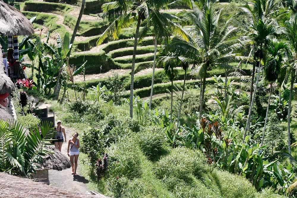 DELUXSHIONIST TRAVEL ROAD TO UBUD BALI - FASHION AND LIFESTYE BLOGGER INDONESIA