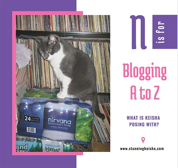 Blogging From A to Z: N is for …