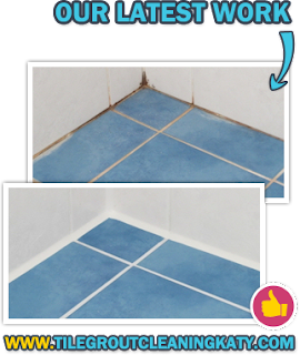 http://www.tilegroutcleaningkaty.com/professional-cleaners/ceramic-tile-cleaners.png