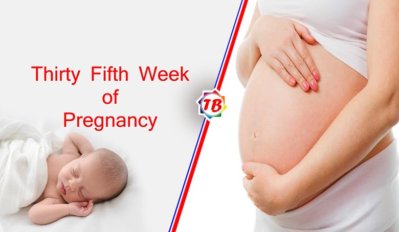 Thirty Fifth Week of Pregnancy