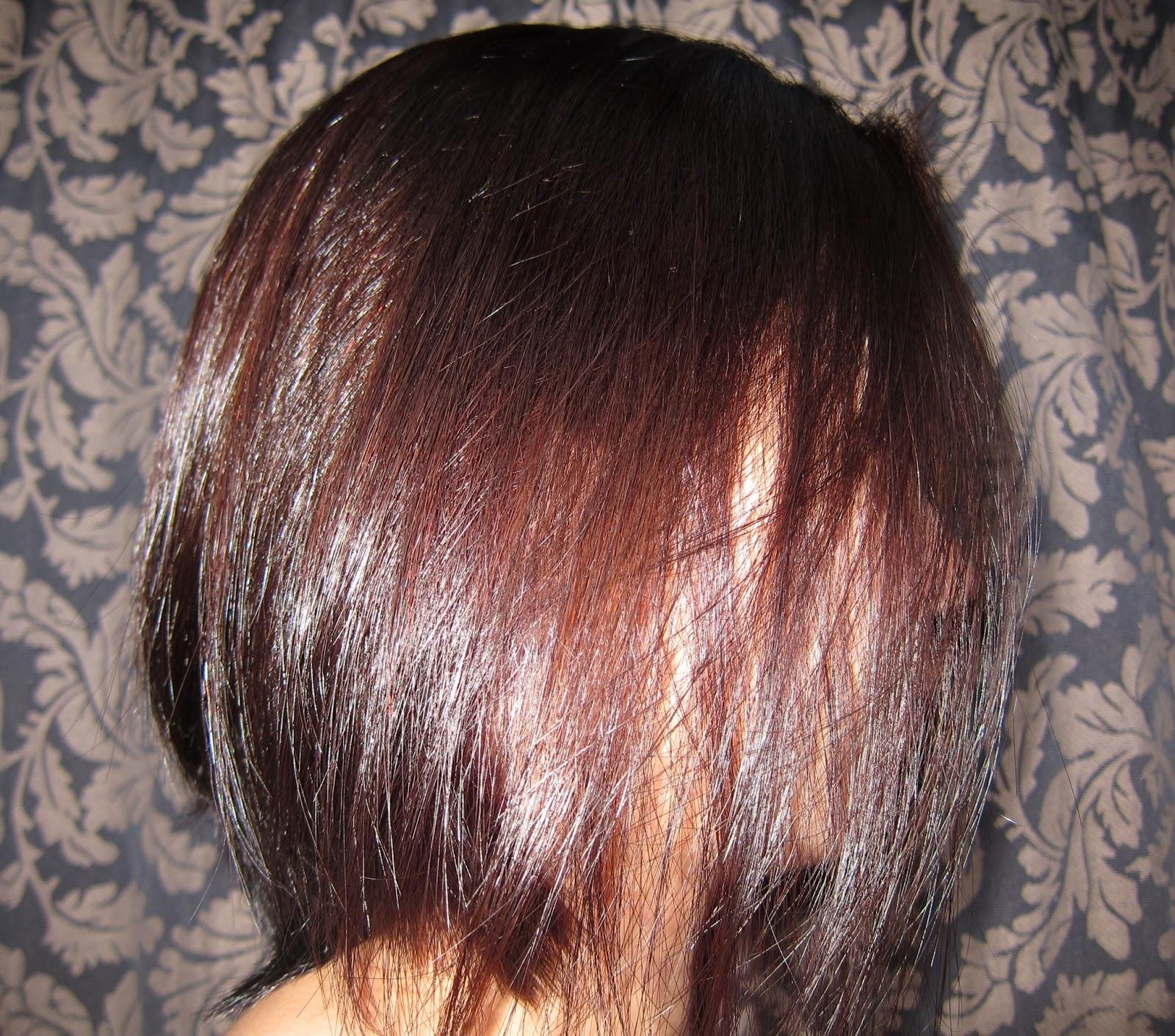 Wickermoss Hair Affair Diy Hair Color Part 2 Schwarzkopf Perfect