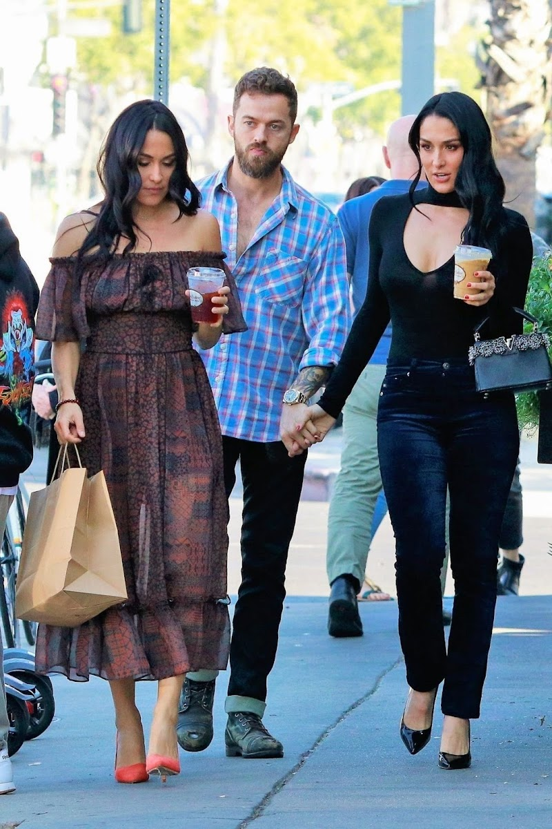 Brie Bella and Nikki Bella Out for Lunch in Los Angeles 11 Nov-2019