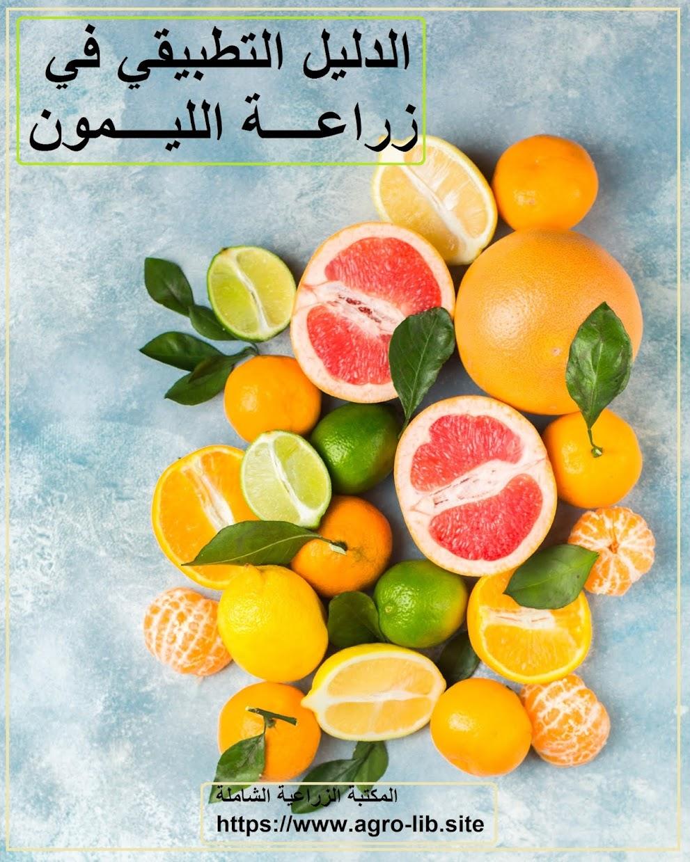 كتاب : الدليل التطبيقي في زراعة الليمون