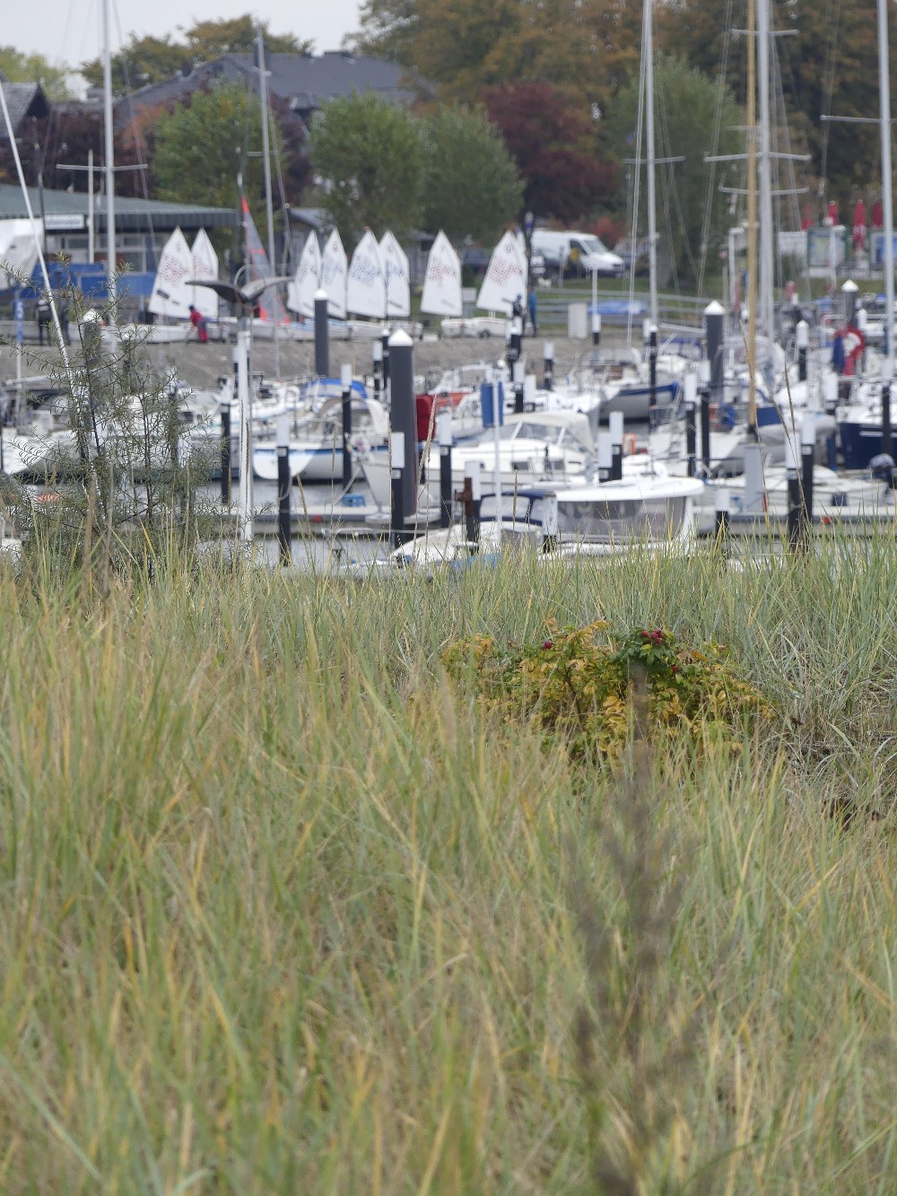 Segelhafen strand3