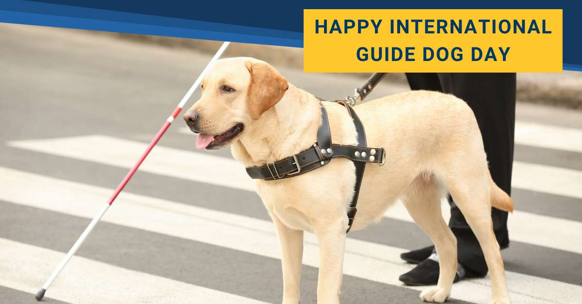 International Guide Dog Day Wishes Awesome Images, Pictures, Photos, Wallpapers