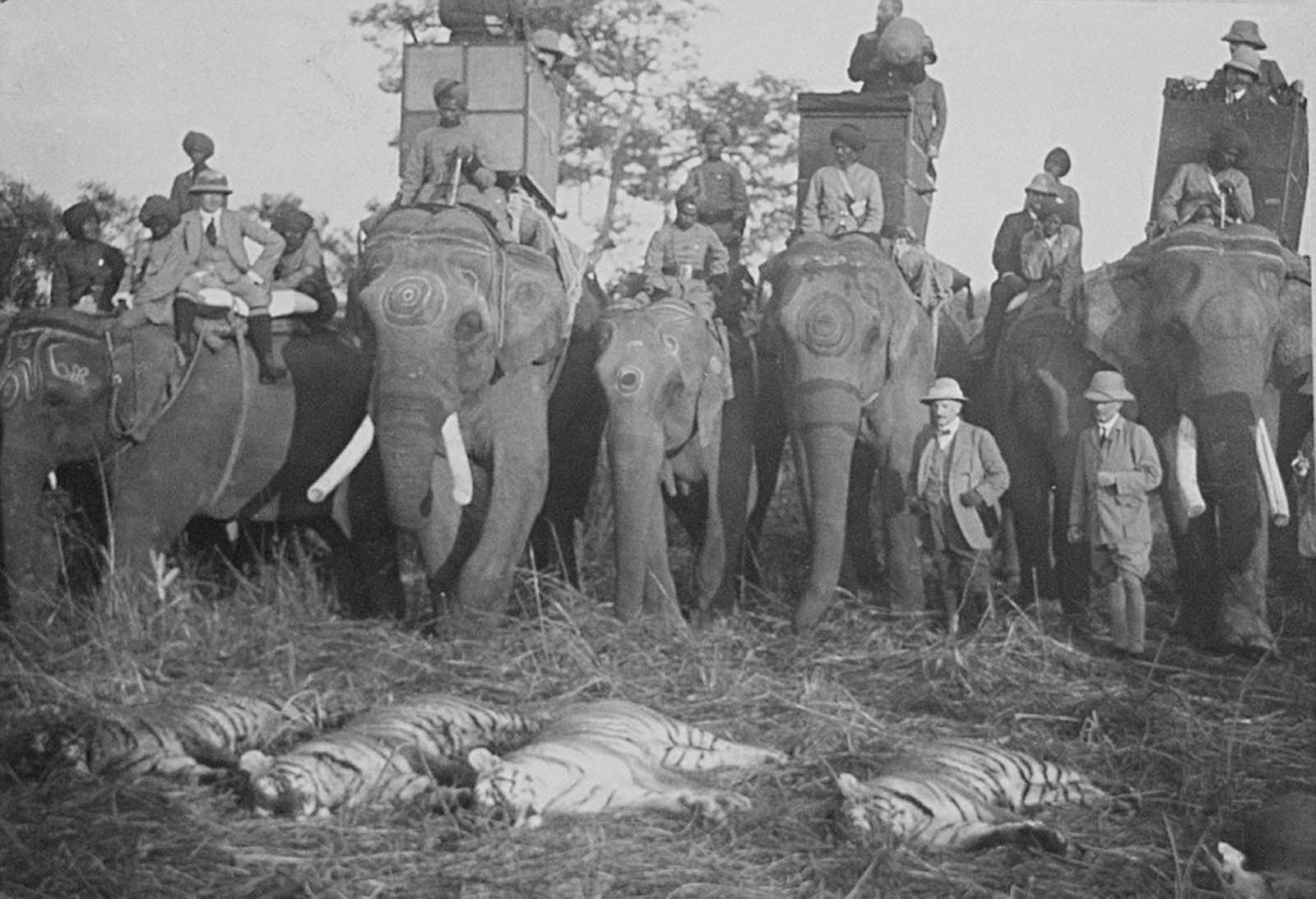 british royals india hunting trip 1911