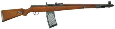Gewehr 41(W)