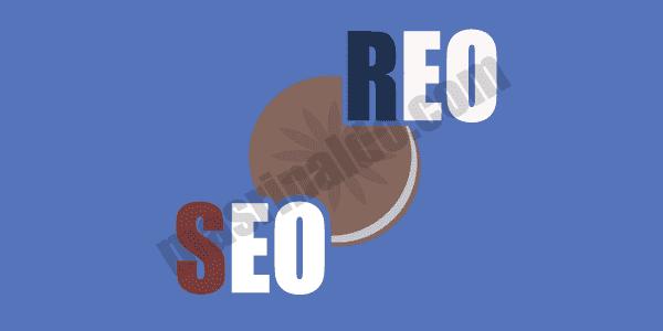 Penjelasan Lengkap Apa Itu Teknik REO dan Perbedaan nya dengan teknik SEO?