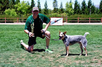 Vader: Disc Dogs of the Golden Gate, July 2013, Winner, Novice Div