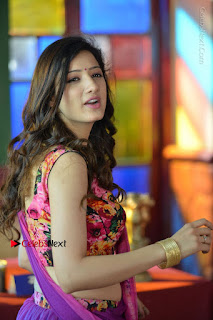 Actress Richa Panai Stills in Half Saree at Rakshaka Bhatudu Sets  0015.JPG