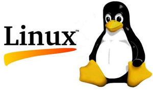 What is Linux? Linux Operating System Detail in English