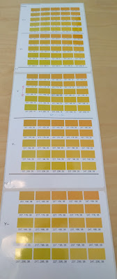 Color Tone Matching Print Output