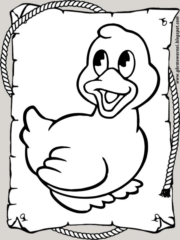Mewarnai Gambar Anak Bebek Lucu Banget Untuk TK dan SD