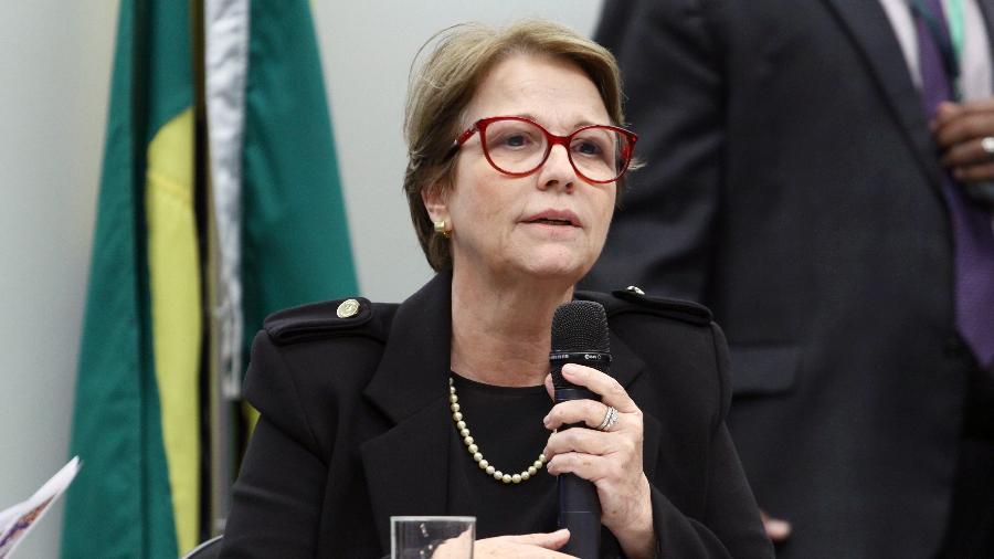 Ministra da Agricultura e o fascismo: Favorecendo os interesses das corporações dos agrotóxicos