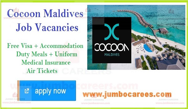 Cocoon Maldives Job Openings, Cocoon Maldives Recruitment, Career Opportunities at Cocoon Maldives Recruitment 2019