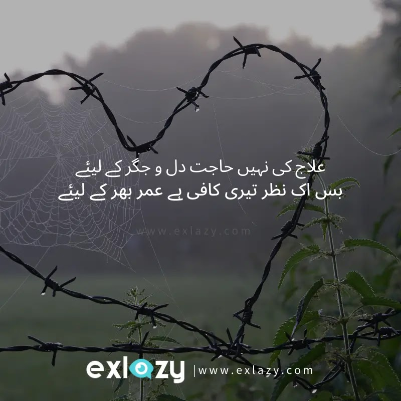 The Best 2 Line Love Poetry in Urdu Font