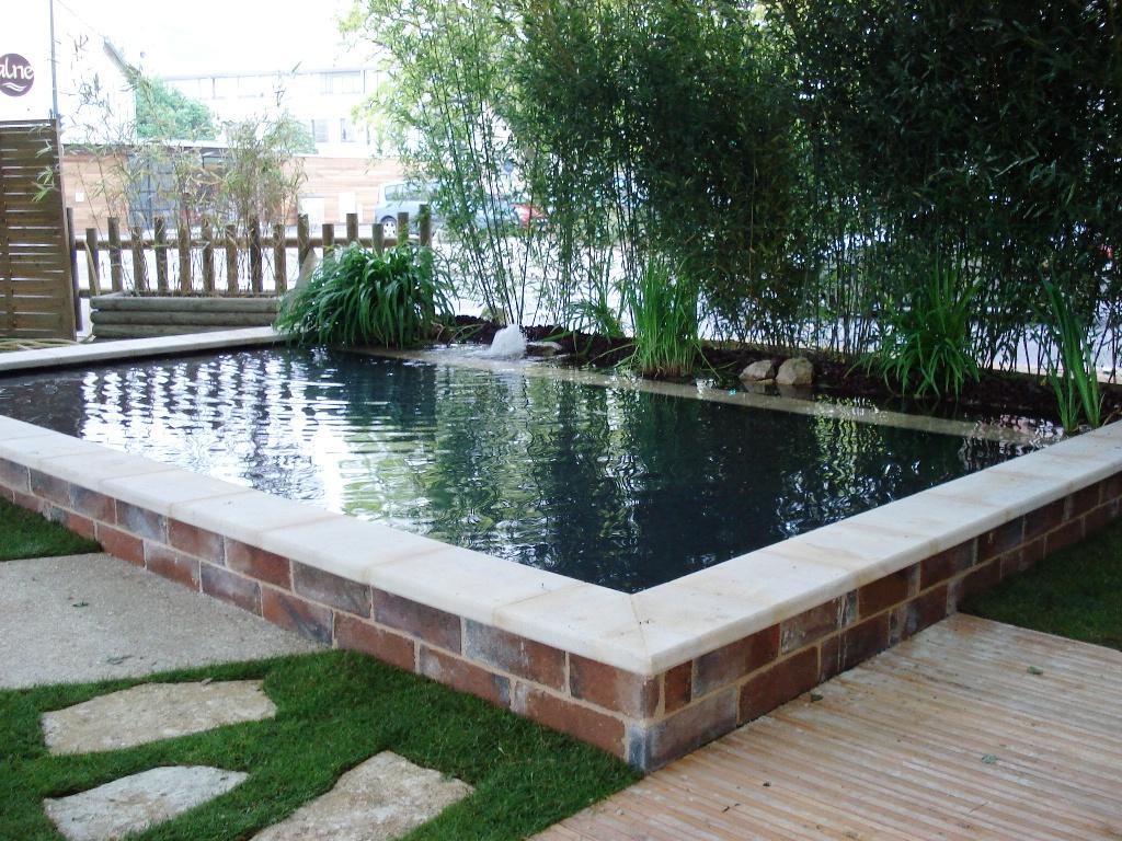 Bassin De Baignade Autoconstruction piscine naturelle et baignade naturelle: 2011