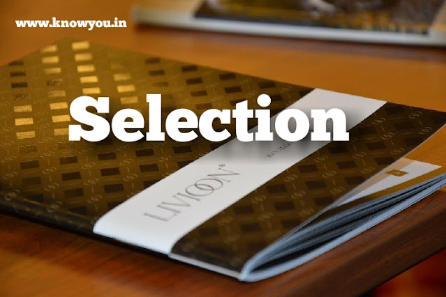 Selection Process of Human Resources, Process of Selection, 2020.