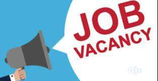 Graduate Experienced Candidates Job Vacancy in Vr Consultancy And Services