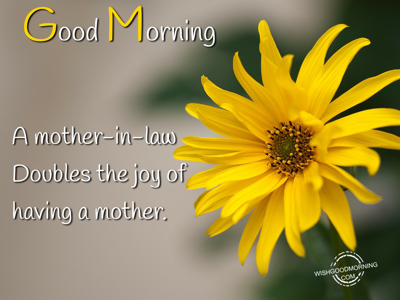 Good Morning Mom Messages : Good morning wishes messages with amazing images for