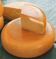 Quesos holandeses. Horma de queso Gouda y varias rebanadas.
