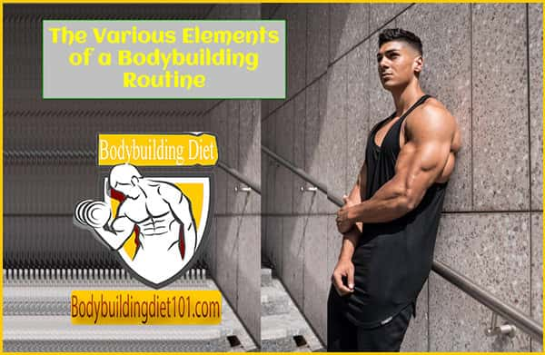 The Various Elements of a Bodybuilding Routine