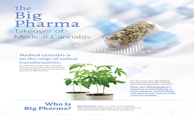The Big Pharma Takeover of Medical Cannabis #infographic